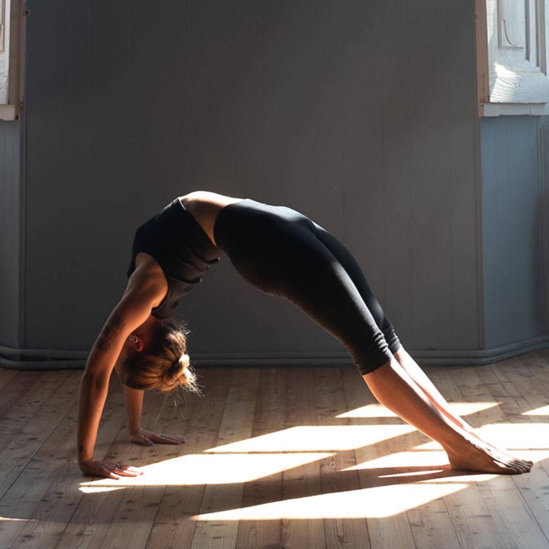 yoga advanced GIO 8152
